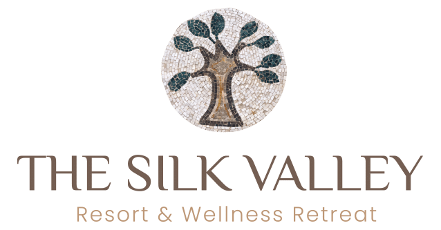 The Silk Valley