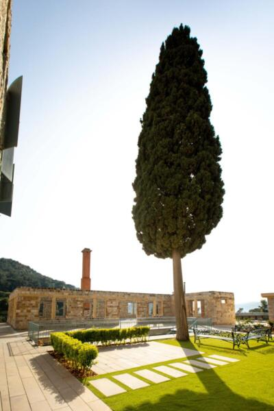 The Silk Valley - Villa garden